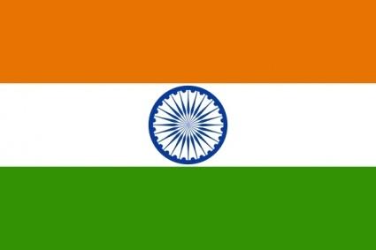 Indien: Einwohner & Unternehmen werden befragt